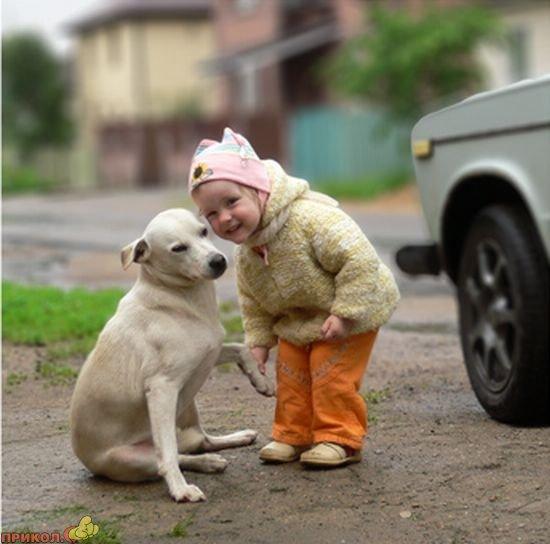 dog-and-child-03