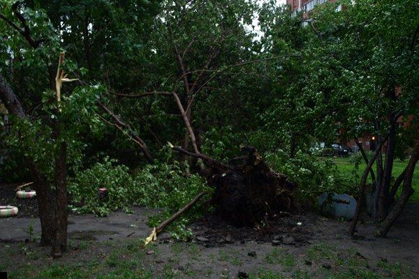 novosibirsk-uragan-21