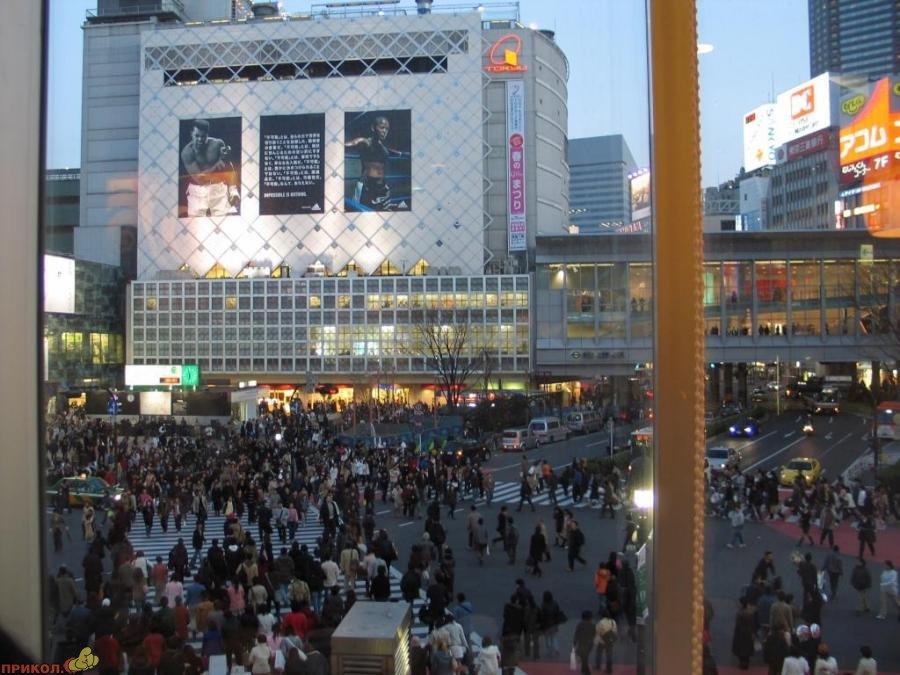 shibuya-crossroad-03