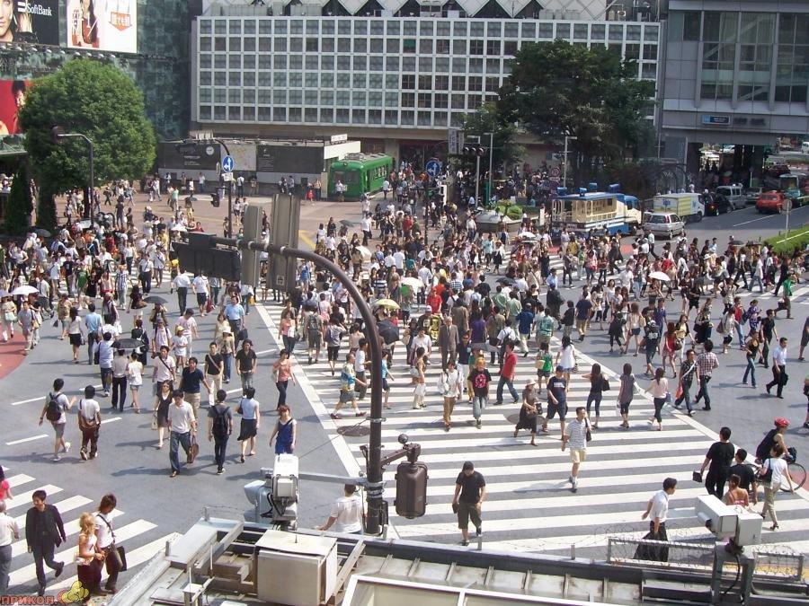 shibuya-crossroad-04