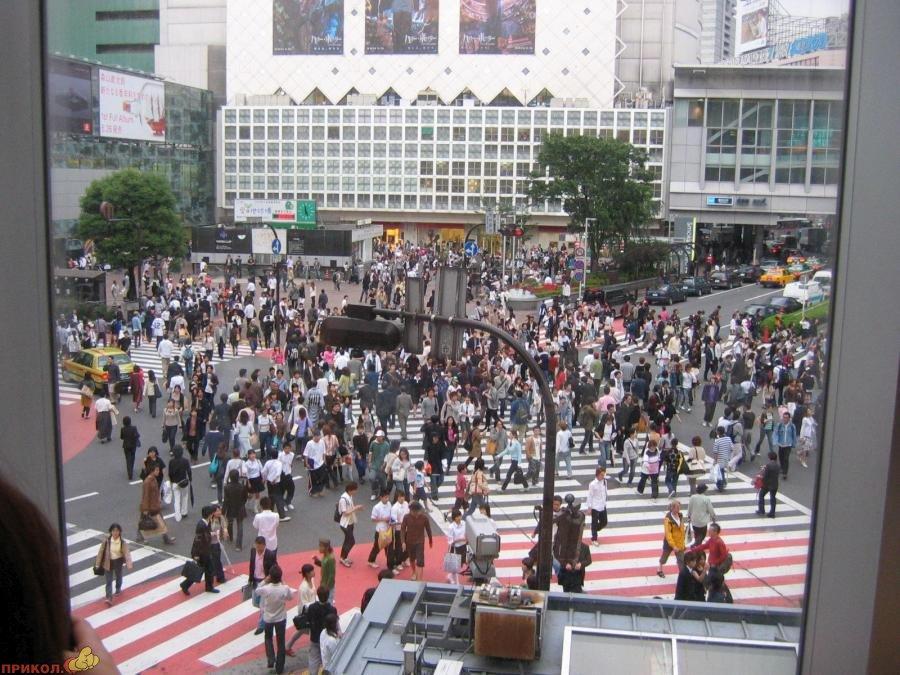 shibuya-crossroad-05