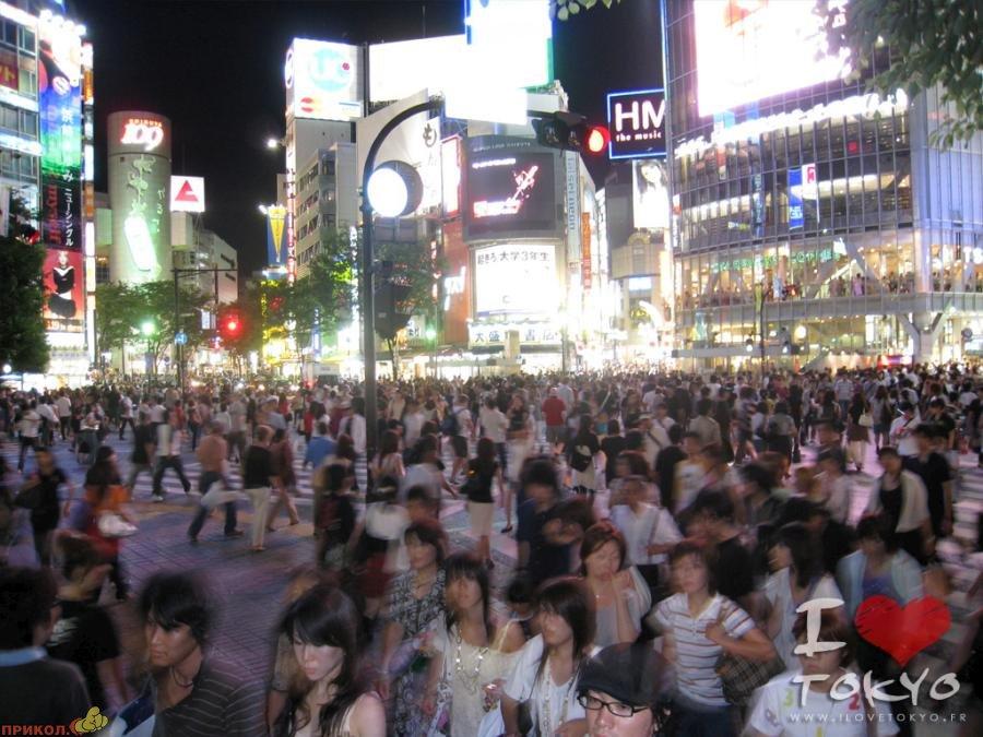 shibuya-crossroad-08