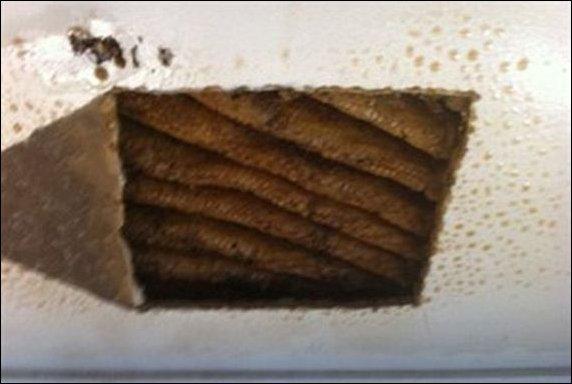 Мед на потолке