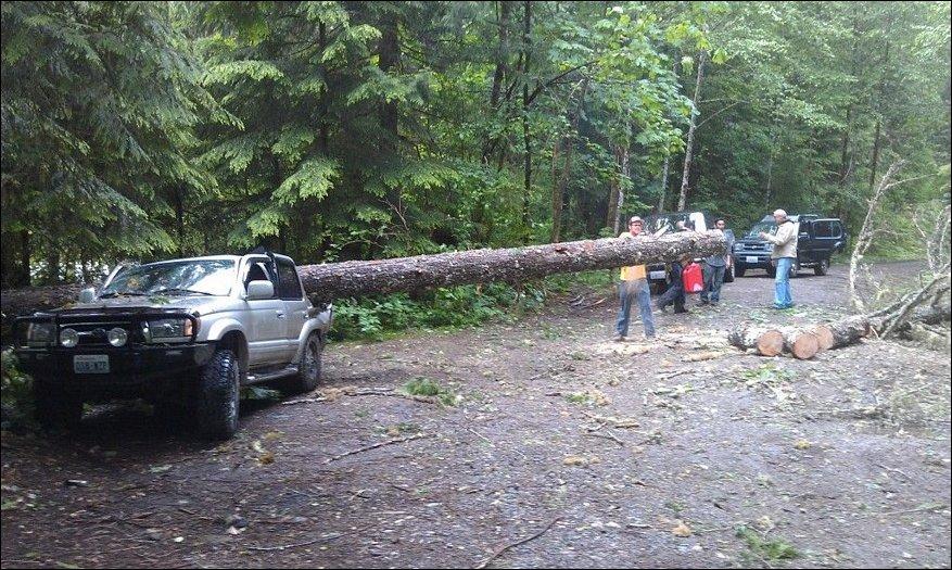 Как американцы ездят за дровами