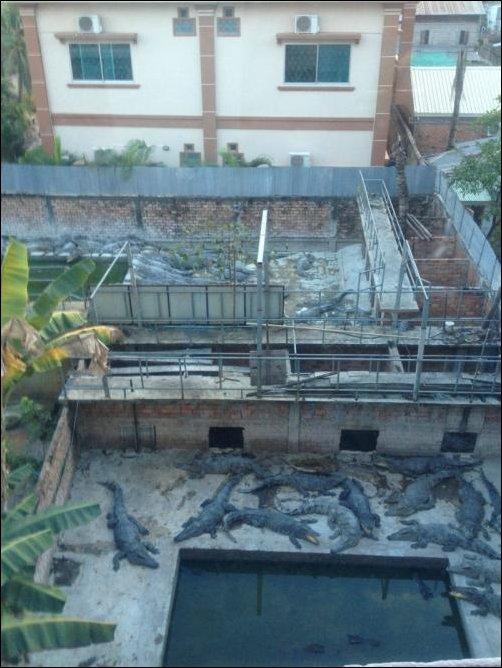 Вид из окна номера отеля в Камбодже