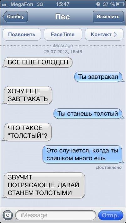 SMS диалоги с собакой
