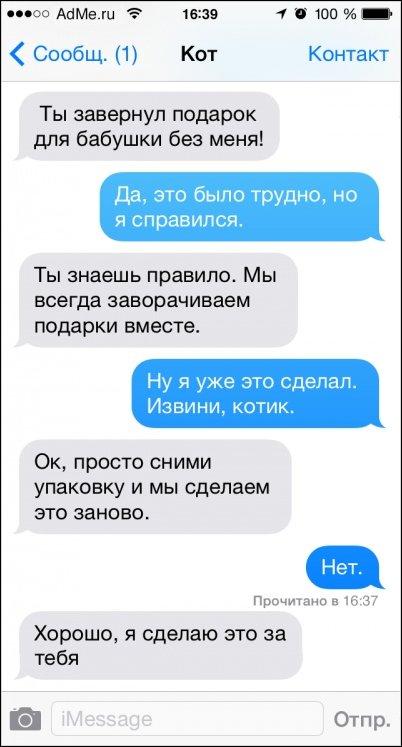 SMS переписка с котом
