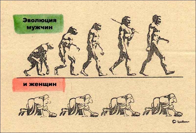 скачать игру про эволюцию