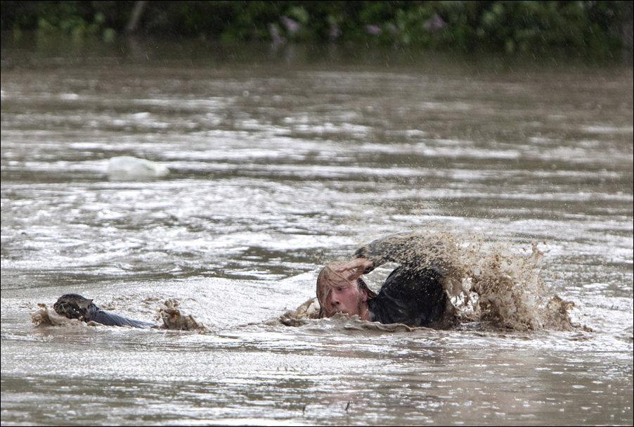 Кот и хозяин спасаются от наводнения