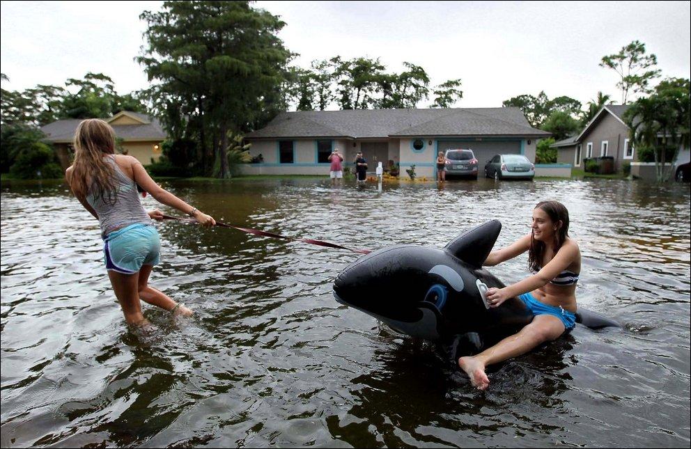 Самые красивые, смешная картинка потоп