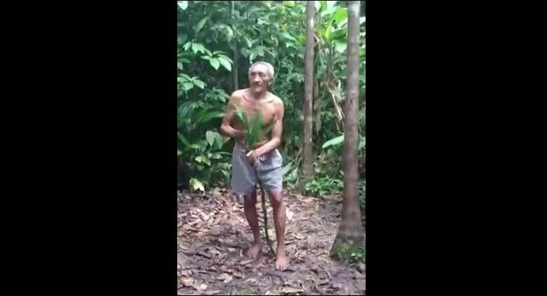 Мастер-класс по залезанию на дерево