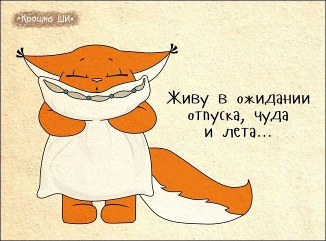 Белка Ши