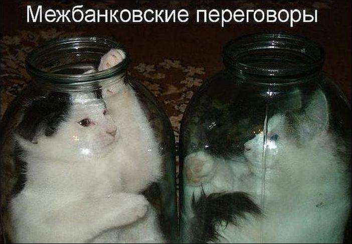 Фото прикол