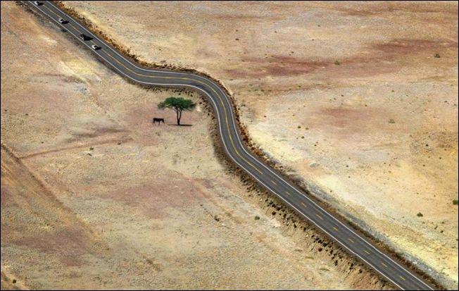 Бережное отношение к природе