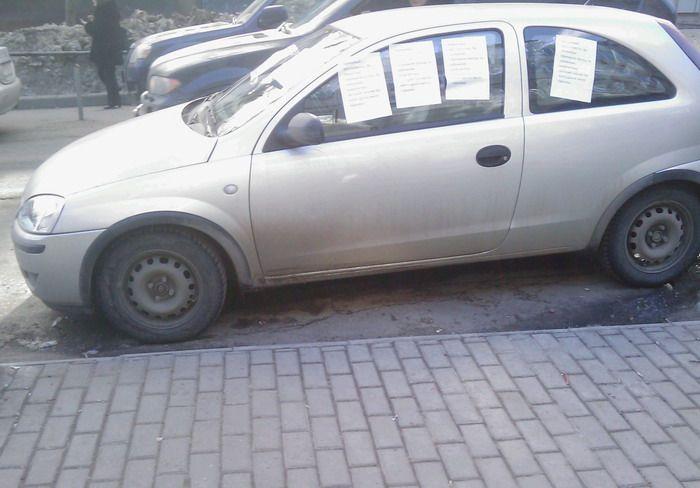 car-stupid-01