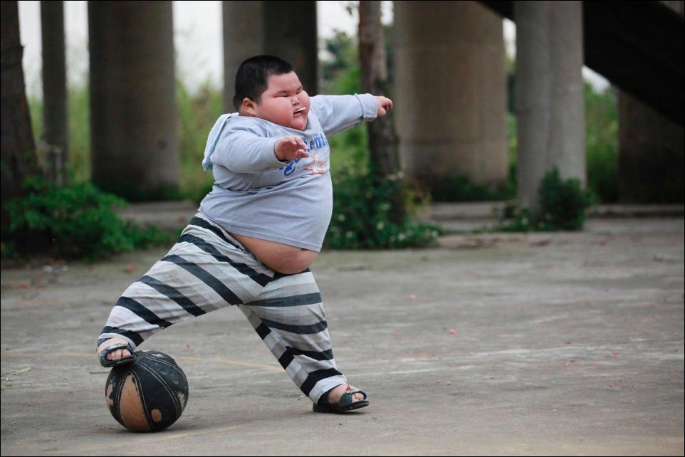 всегда фото приколы про жирных людей находится как проехать