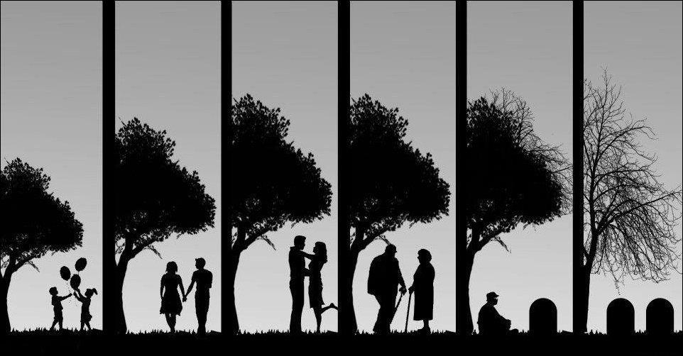 Картинки о жизни