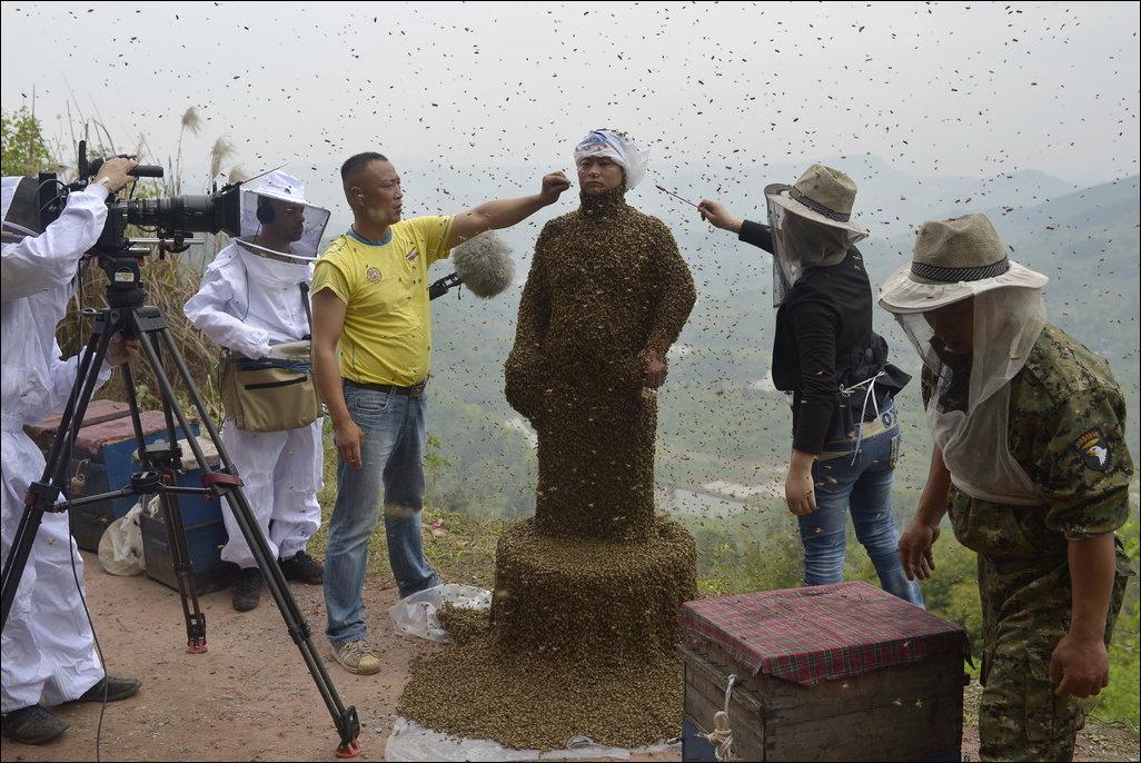 Весь покрытый пчелами