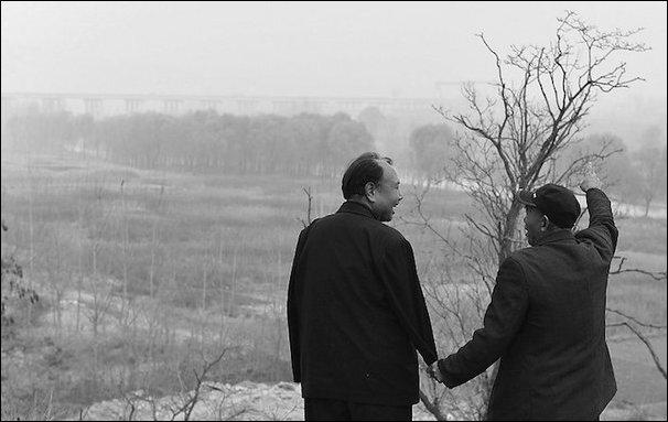 Два китайца посадили 10 000 деревьев