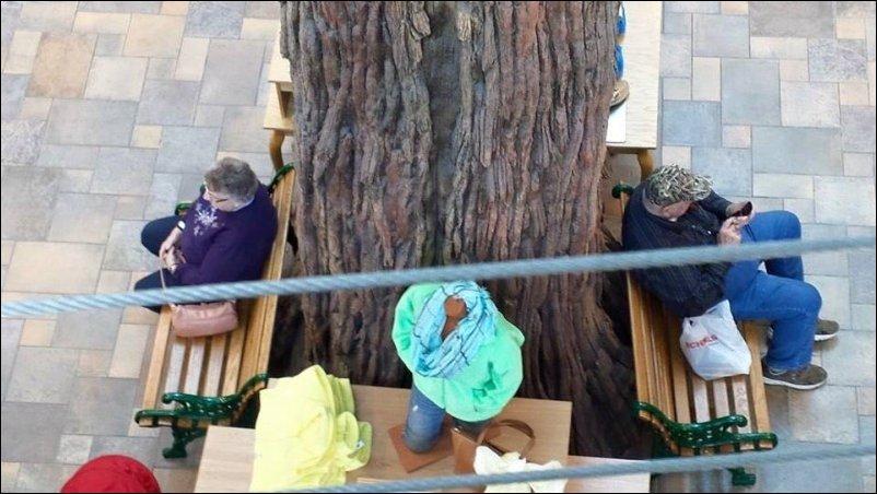 Дед и бабушка ждут друг друга возле торгового центра
