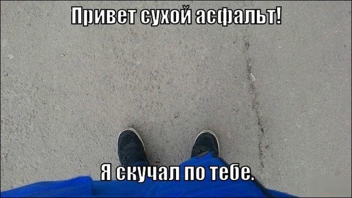 Фото приколы