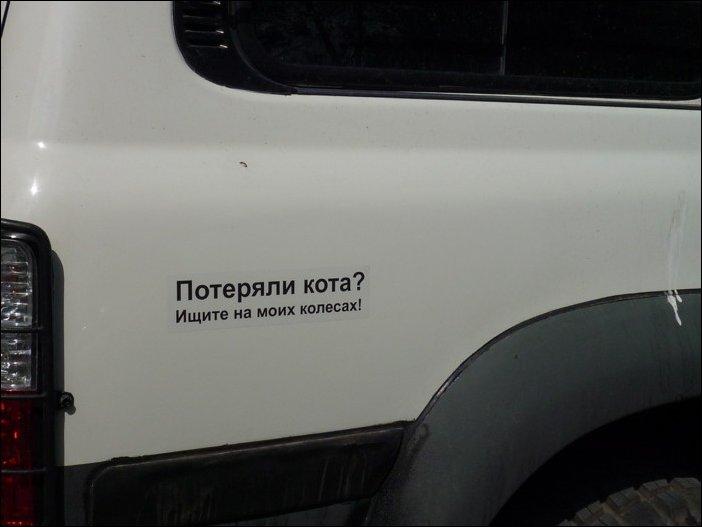 Наклейки на автомобиле