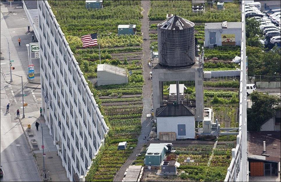 Ньюйоркские крыши