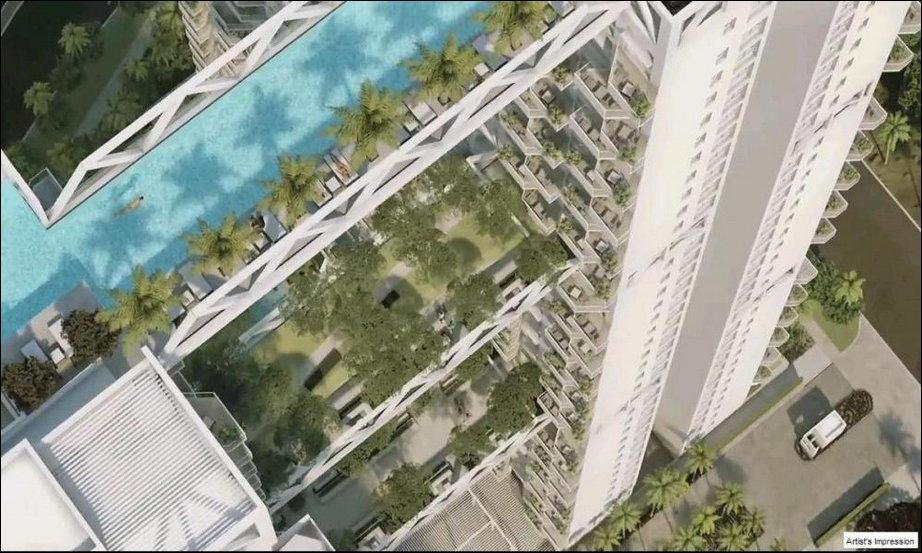 sky habitat