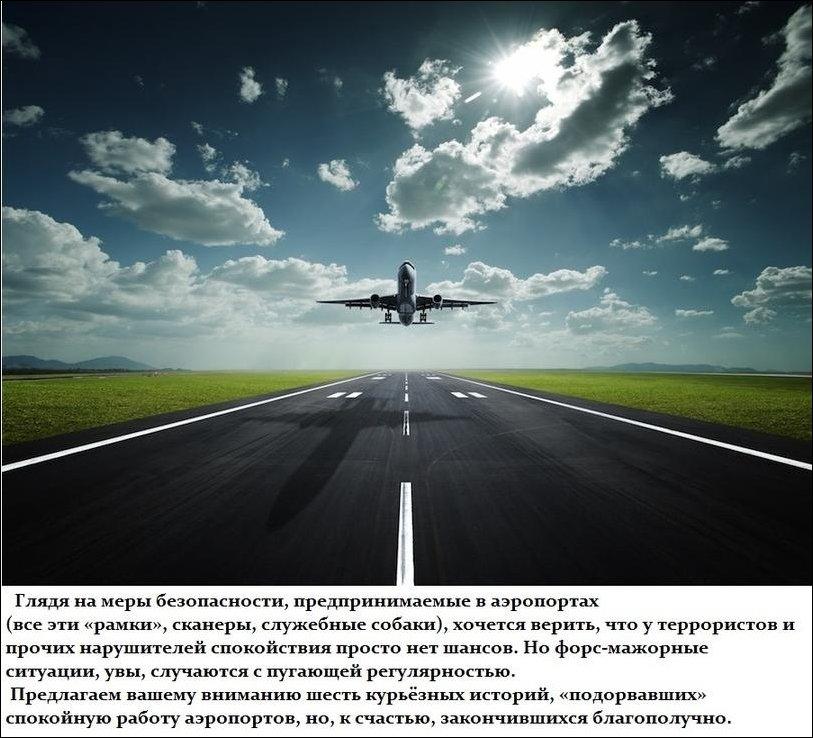 Курьезные истори нарушения безопасности в аэропортах