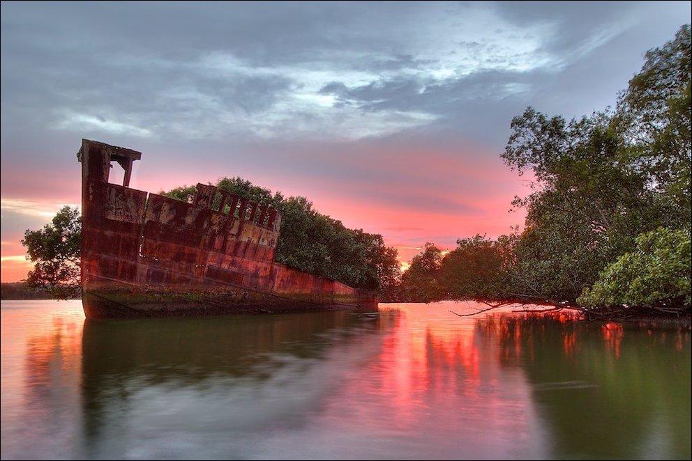 102-летний корабль превратился в плавающий лес