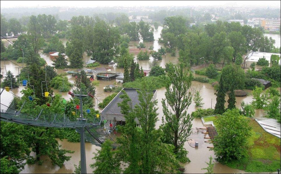 Затопленный зоопарк в Праге