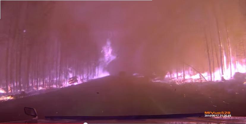 Сквозь лесной пожар