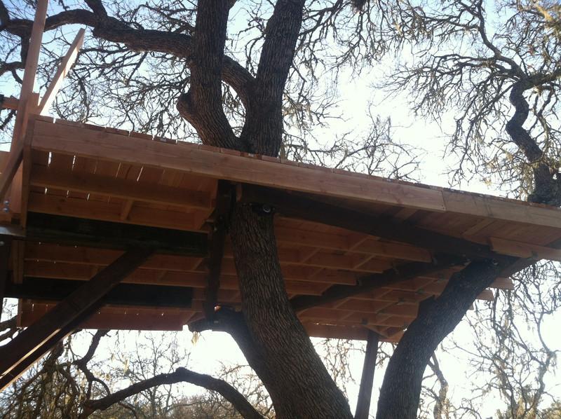 Строительство дома на дереве
