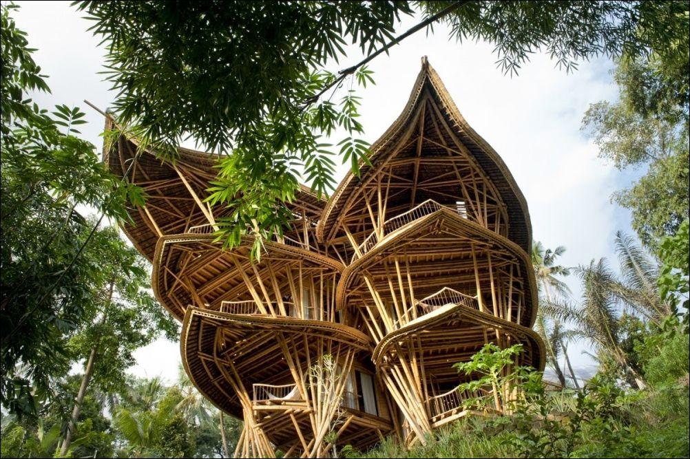 Дом из бамбука