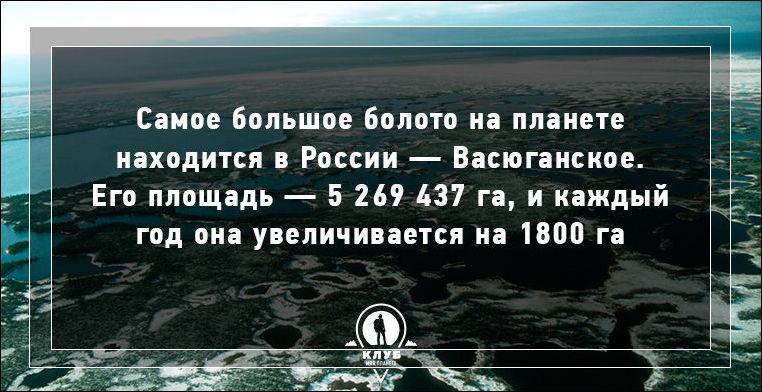 Факт о воде
