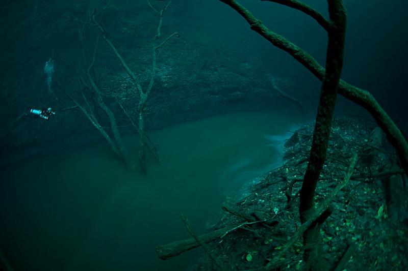 cenote-angelita-01