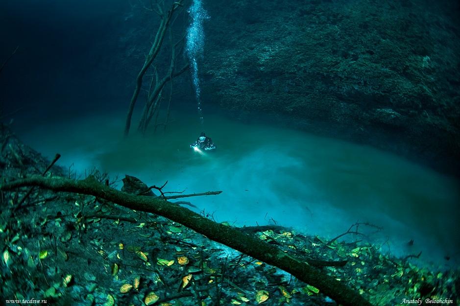 cenote-angelita-04