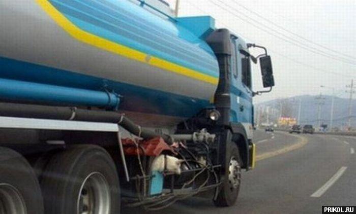dog-in-truck-05