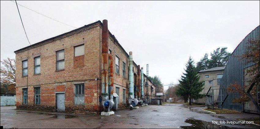 elochnie-igrushki-02