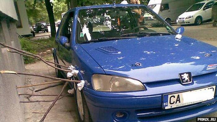 fotoprikol-13nov2009-20