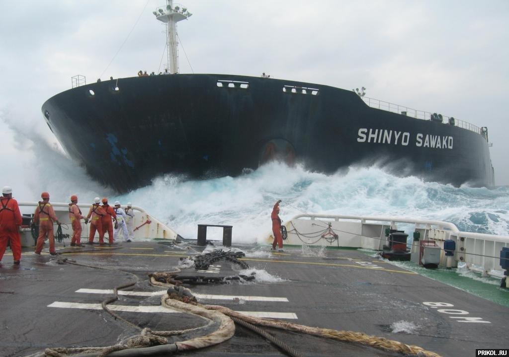 shinyo-sawako-02