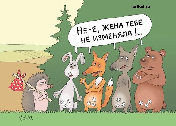 vieb-na-kuhne