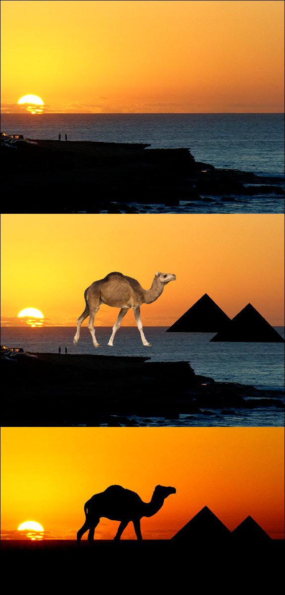 Как сделать африканское фото