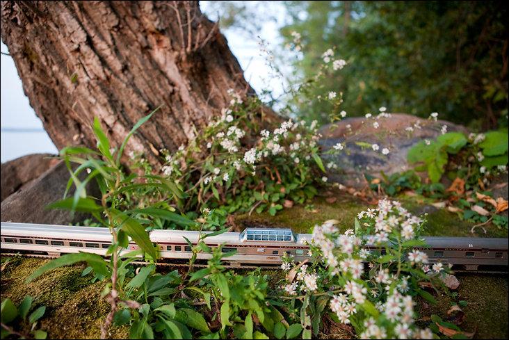 Путешествие миниатюрного поезда