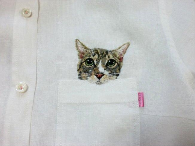 Коты на рубашке
