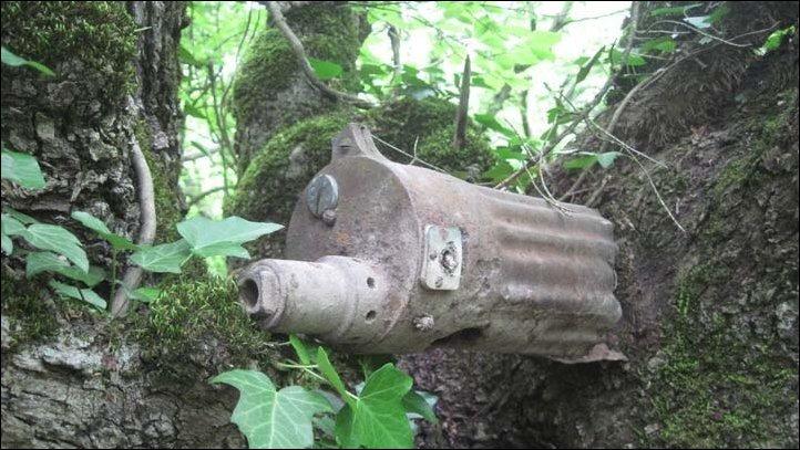 Вросшие в деревья оружие и каски бойцов