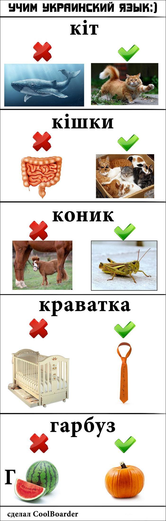 Украинский язык в картинках