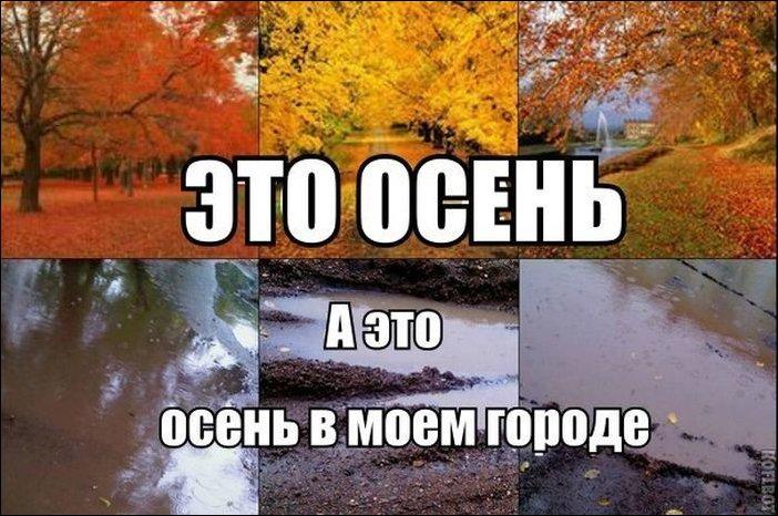 Прикольные картинки