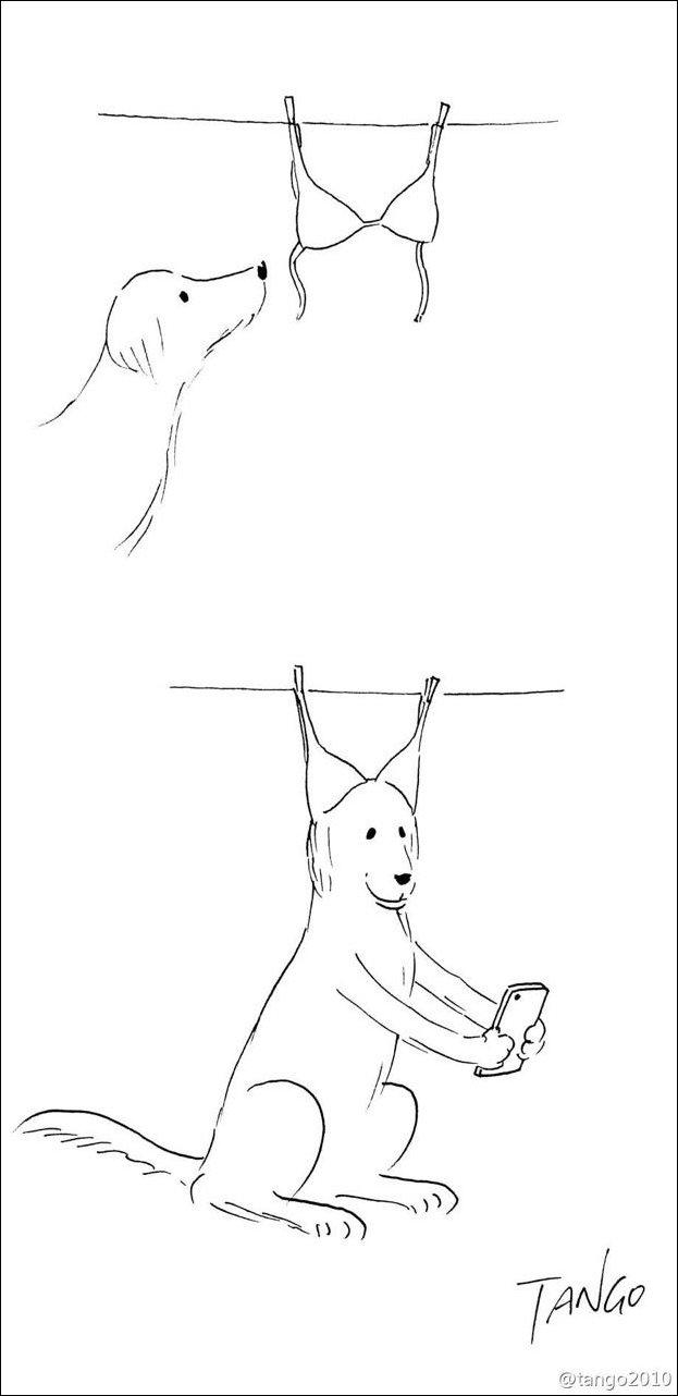 Прикольный рисунок