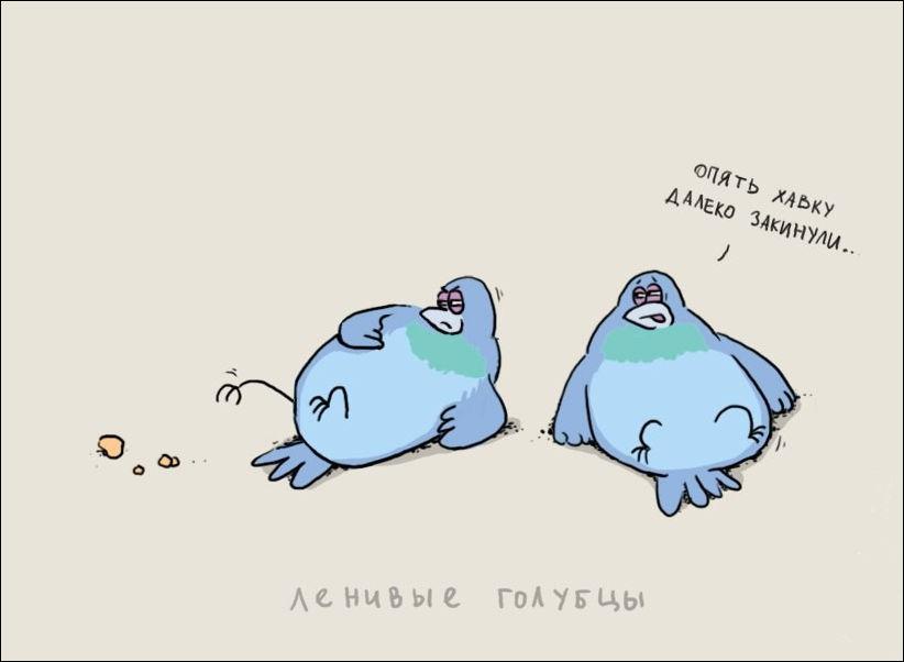 Зимние для, лень картинки смешные